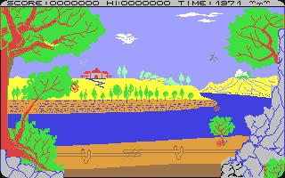 Screenshot for Bird Mother